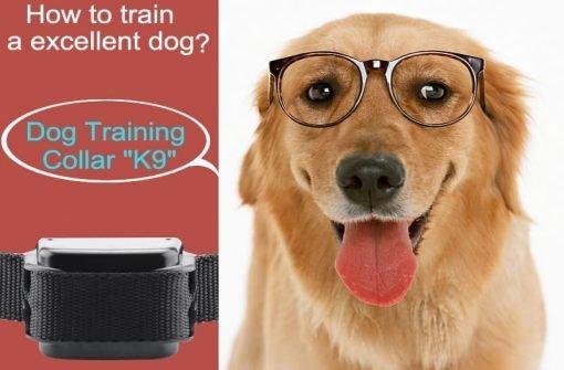Dog Training Collar 'K9 II' - Vibration + Shock Selectable, 3 Shock Levels, Remote Control, 1000 Meter Range