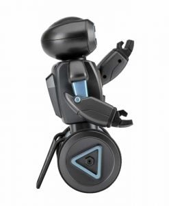 HG 2.4G Auto Balance RC Stunt Robot - Four Characteristics, Load Bearing, Dancing and Singing, Smart Gesture Sensors, Fight Mode